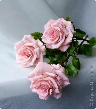 Поделка изделие 8 марта Валентинов день День рождения День учителя Свадьба Лепка розовое настроение  Фарфор холодный фото 1