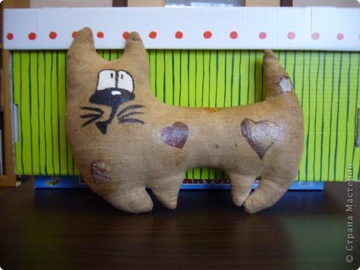 Чердачные котята фото 3