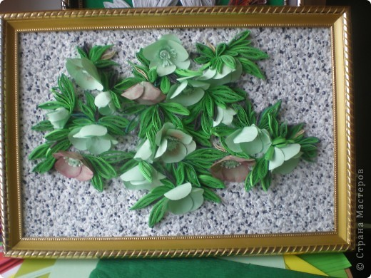 Многие вспомнят те времена, когда к 8 Марта привозились эти цветы к нам.Среди веточек мимозы они притягивали как магнит.Очень приятно было среди зимы держать в ладонях непонятное чудо такое. фото 1