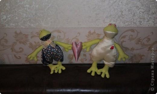 тильды лягушки фото 2