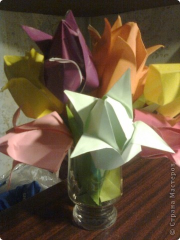 Мої квіти!!! фото 8