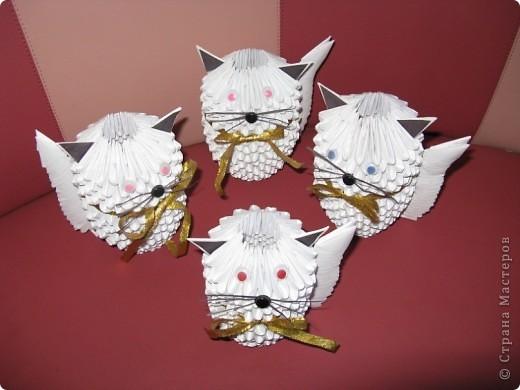 Сімейство котячих!!!!!!! фото 2