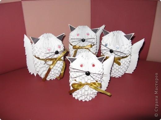 Сімейство котячих!!!!!!! фото 1