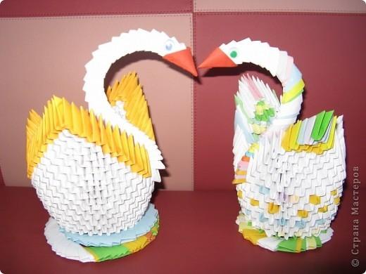 Мої лебеді! фото 1