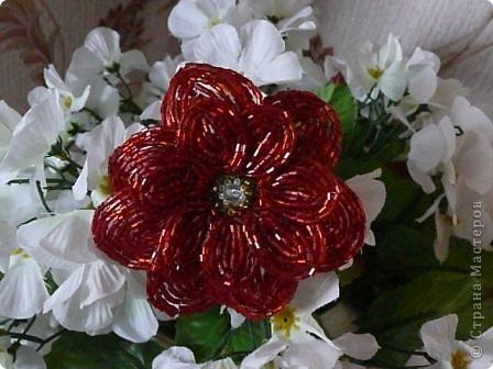 Мой первый опыт в работе с техникой французского плетения. Строго не судите, пока учусь, буду совершенствовать свои навыки. (из бисера только красный цветок, белые использованы для фона) фото 1