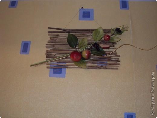 Яблоневая ветка