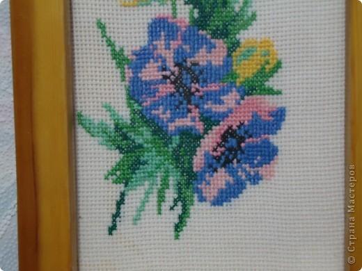 Цветы анимоны в жизни,наверно,очень красивые. фото 3