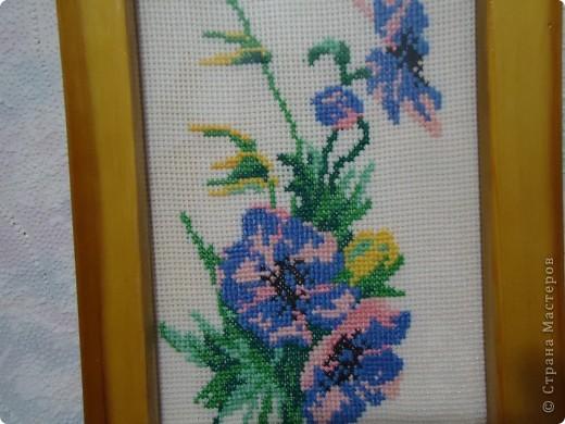 Цветы анимоны в жизни,наверно,очень красивые. фото 2