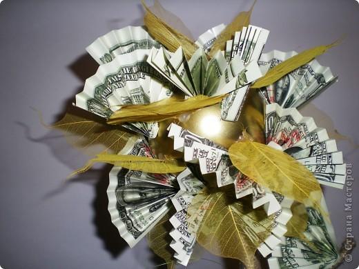 Семейное денежное дерево.... фото 3