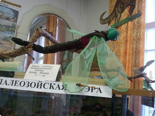 ну это понятно,доисторическая стрекоза :) фото 1