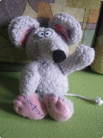 Мышка Софья фото 2