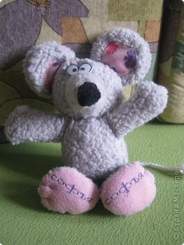 Мышка Софья фото 1