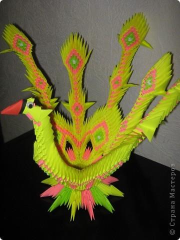 У данной птички первоначально предполагалось 7 перьев, но, неожиданно закончилась бумага))) фото 1