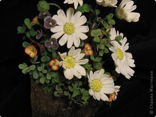 Все цветы и зелень из запекаемой FIMO. ХФ еще не освоила, учусь. Подставка кора пальмы. фото 2