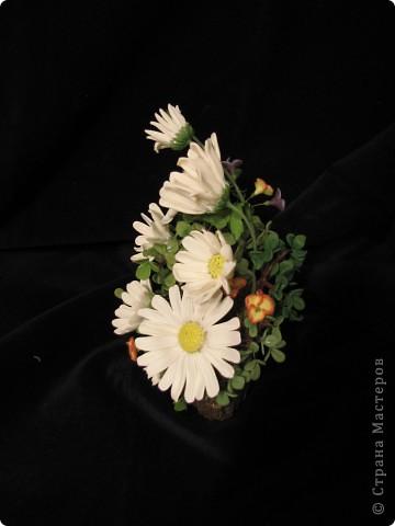 Все цветы и зелень из запекаемой FIMO. ХФ еще не освоила, учусь. Подставка кора пальмы. фото 4