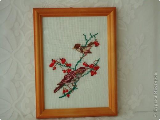 Вышивка с птичками.Мне нравятся маленькие вышивки. фото 1