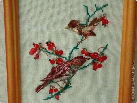 Вышивка с птичками.Мне нравятся маленькие вышивки. фото 2
