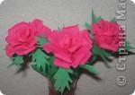 Своими руками можно сделать удивительный подарок бабушкам, знакомым и родным. Один из них – это розы из гофрированной бумаги. Для работы нам понадобилась зеленая бумага и малиновая. Для изготовления розы отрежьте полосу по тянущейся стороне рулона, шириной 6 см. Длина зависит от количества лепестков у розы (примерно 12-14). фото 1
