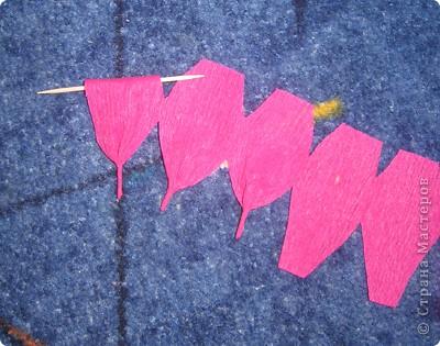 Своими руками можно сделать удивительный подарок бабушкам, знакомым и родным. Один из них – это розы из гофрированной бумаги. Для работы нам понадобилась зеленая бумага и малиновая. Для изготовления розы отрежьте полосу по тянущейся стороне рулона, шириной 6 см. Длина зависит от количества лепестков у розы (примерно 12-14). фото 8