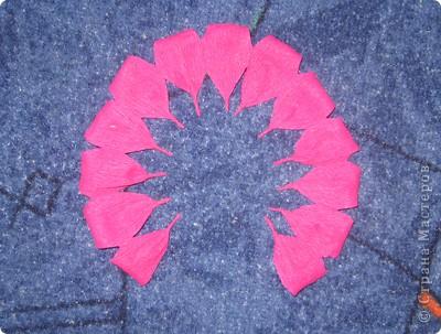 Своими руками можно сделать удивительный подарок бабушкам, знакомым и родным. Один из них – это розы из гофрированной бумаги. Для работы нам понадобилась зеленая бумага и малиновая. Для изготовления розы отрежьте полосу по тянущейся стороне рулона, шириной 6 см. Длина зависит от количества лепестков у розы (примерно 12-14). фото 9