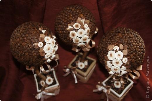 Кофейные деревца со сливочными розочками фото 8