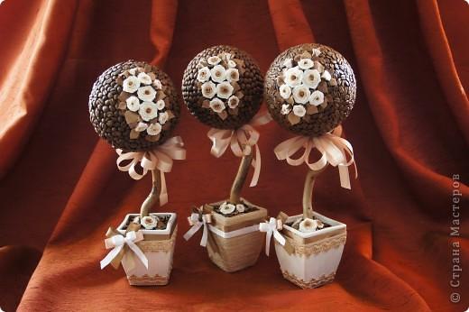 Кофейные деревца со сливочными розочками фото 1