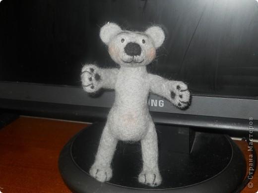 Новый мишка фото 3