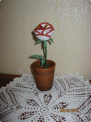 Подарки-сувениры к 8 марта. фото 2