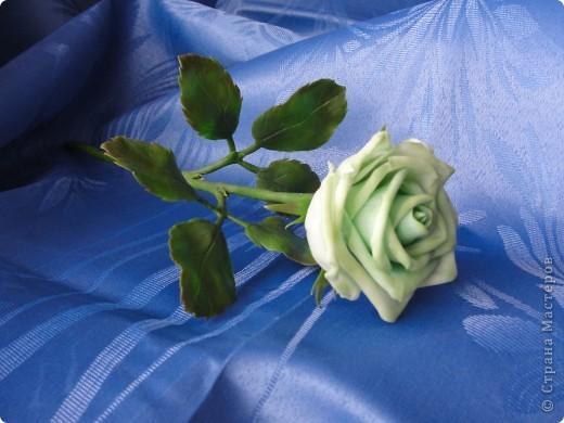 Поздравляю всех представительниц прекрасного пола с праздником 8 МАРТА!!! Желаю счастья, любви, здоровья и вдохновения! фото 2