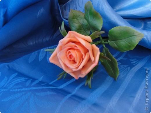 Поздравляю всех представительниц прекрасного пола с праздником 8 МАРТА!!! Желаю счастья, любви, здоровья и вдохновения! фото 3