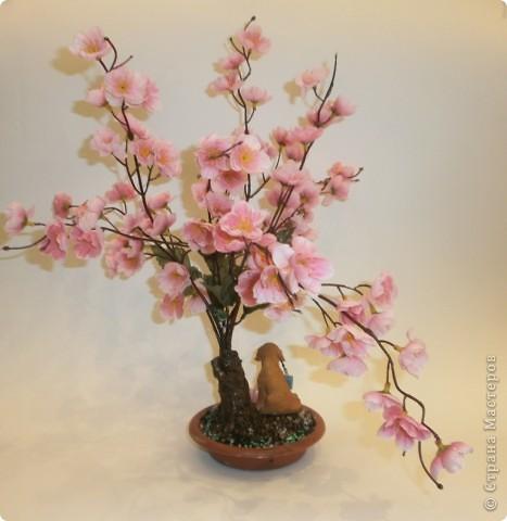 весна идет фото 2