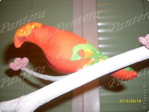 Сегодня ко мне прилетели птички, расселись на веточку и радуют меня своей пестрой расцветкой. Видимо из за нее муж с сыном называют их попугаями :))) Но я вас уверяю,это точно не попугаи!!! Просто у этих птичек своя миссия - радовать глаз и повышать настроение   фото 6