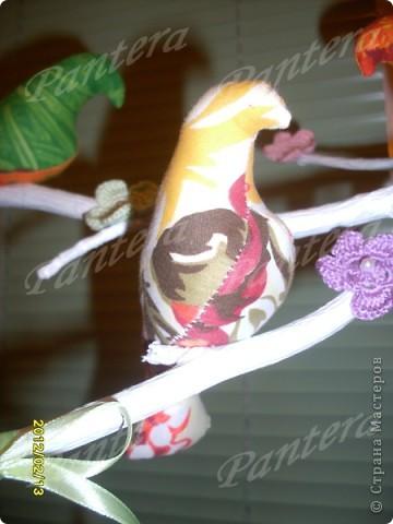 Сегодня ко мне прилетели птички, расселись на веточку и радуют меня своей пестрой расцветкой. Видимо из за нее муж с сыном называют их попугаями :))) Но я вас уверяю,это точно не попугаи!!! Просто у этих птичек своя миссия - радовать глаз и повышать настроение   фото 4