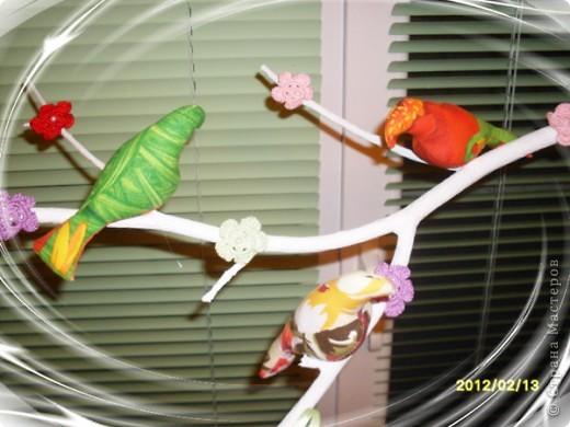 Сегодня ко мне прилетели птички, расселись на веточку и радуют меня своей пестрой расцветкой. Видимо из за нее муж с сыном называют их попугаями :))) Но я вас уверяю,это точно не попугаи!!! Просто у этих птичек своя миссия - радовать глаз и повышать настроение   фото 5