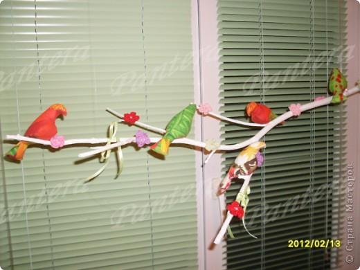 Сегодня ко мне прилетели птички, расселись на веточку и радуют меня своей пестрой расцветкой. Видимо из за нее муж с сыном называют их попугаями :))) Но я вас уверяю,это точно не попугаи!!! Просто у этих птичек своя миссия - радовать глаз и повышать настроение   фото 2