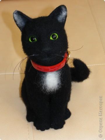 Валяный котик Сигизмунд II фото 1