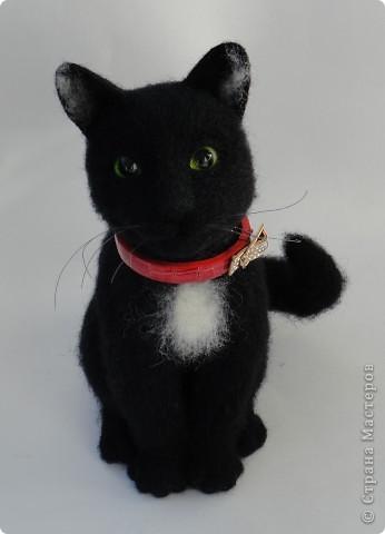 Валяный котик Сигизмунд II фото 2