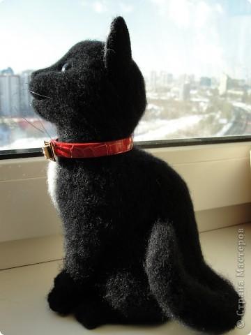 Валяный котик Сигизмунд II фото 5