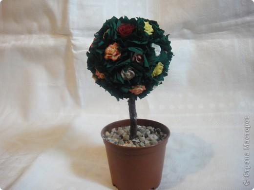 Здравствуйте!Всех Мастериц с праздником Весны я поздравляю !И у меня расцвело розовое дерево.Конечно есть не доработки и есть чему поучиться у Мастериц .Спасибо Вам за Мастер классы. фото 1