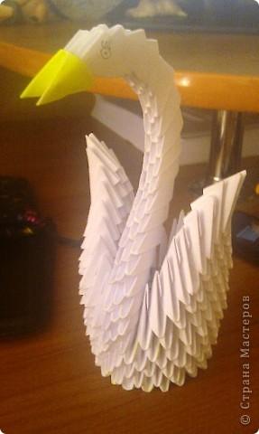 Птица счастья,подруге )Эту птичку увидела у кого то мастера,стралась сделать приблизительно похожую.  Подарила подруге,эта птица вызвала у неё бесконечный восторог!)  фото 2