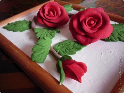 Слепила эти розы давно, но собрать их в картину оказалось проблемно. Не судите строго ведь это первый опыт))) фото 5