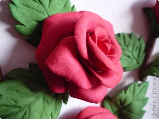 Слепила эти розы давно, но собрать их в картину оказалось проблемно. Не судите строго ведь это первый опыт))) фото 3