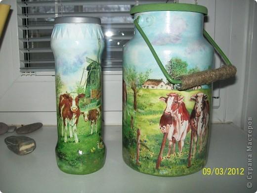 Добрый день.Я опять с деревенской темой.Коровки,коровки вот только пастушка не хватает.На этот раз трио и опять все на дачу. фото 11