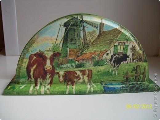 Добрый день.Я опять с деревенской темой.Коровки,коровки вот только пастушка не хватает.На этот раз трио и опять все на дачу. фото 2