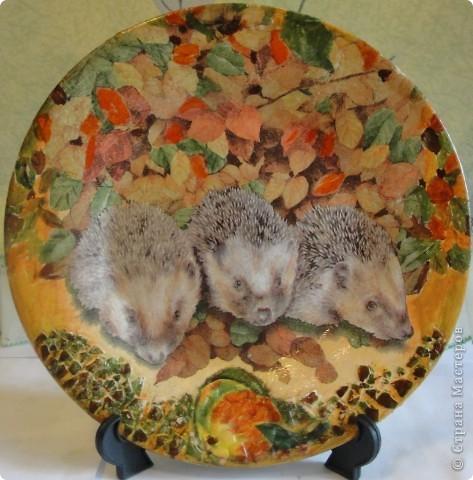 Этот букет живых, прекрасных цветов ВСЕМ ВАМ жительницы СМ!!!  С праздником  ВЕСНЫ И ВЕСЕННИХ НАДЕЖД!!!  ......   и,конечно, подарки. фото 4