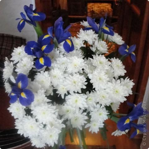Этот букет живых, прекрасных цветов ВСЕМ ВАМ жительницы СМ!!!  С праздником  ВЕСНЫ И ВЕСЕННИХ НАДЕЖД!!!  ......   и,конечно, подарки. фото 1