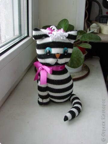 Всем  привет,  я  кот  ВАСЬКА фото 8