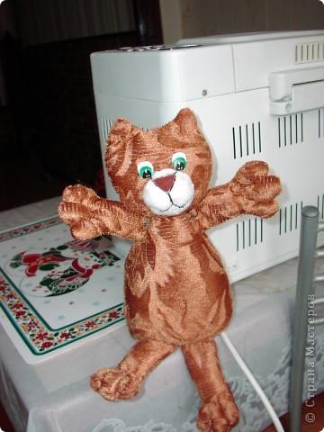 Всем  привет,  я  кот  ВАСЬКА фото 1