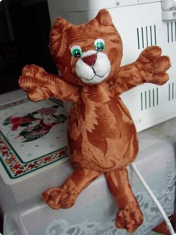 Всем  привет,  я  кот  ВАСЬКА фото 2