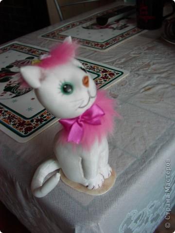 Всем  привет,  я  кот  ВАСЬКА фото 12